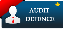 Audit Defence